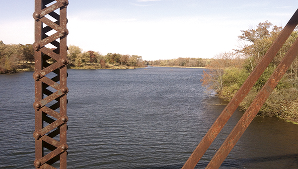 Photo taken from the abandoned railroad bridge over the Cedar River. Photo by Tim Ruzek/Mower Soil and Water Conservation District