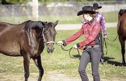 Abigail Quelle of Lyle works with her horse Molly as they get ready for showmanship.