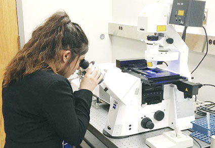 Sarai Sorela observes cells through a high-resolution compound light microscope. Photos provided